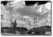 """Manfred Krautschneider - """"Rooster at Dali's funeral"""""""